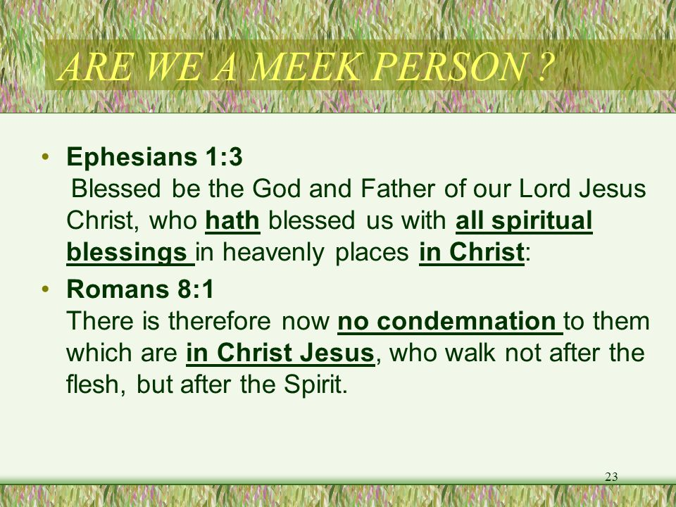 ARE WE A MEEK PERSON .