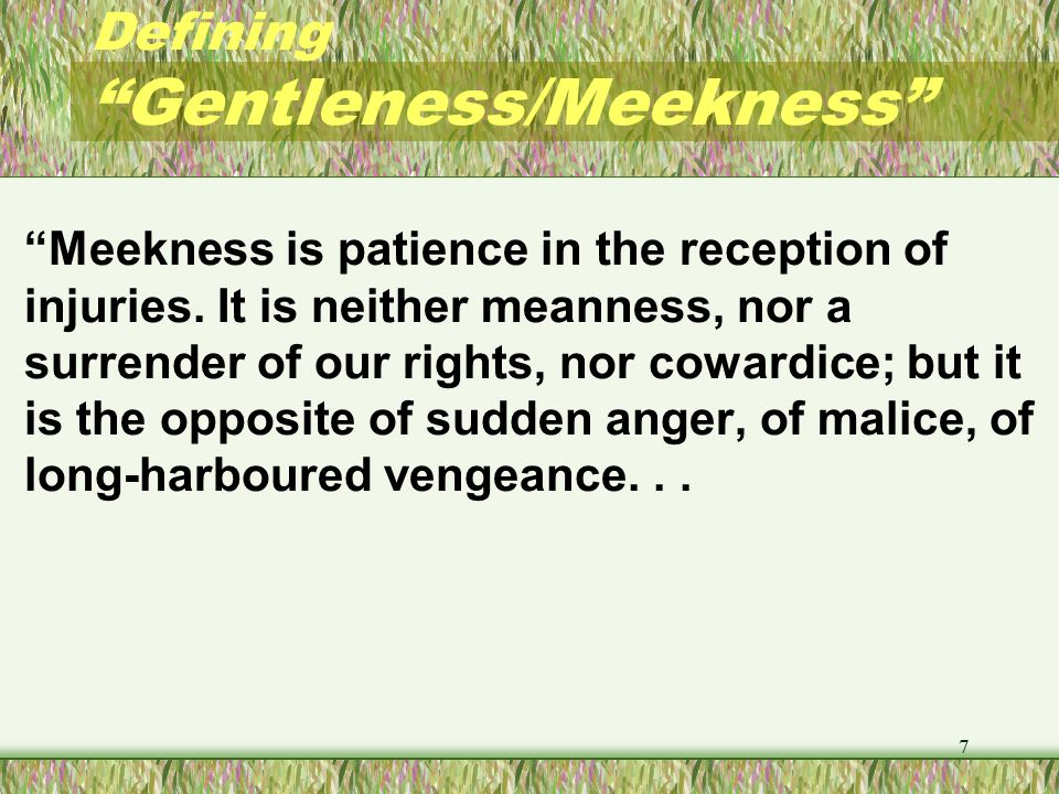 Defining Gentleness/Meekness (Barnes Notes) Meekness produces peace.
