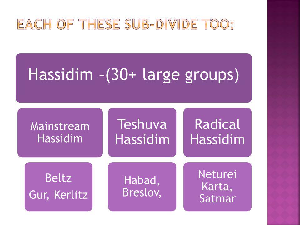 Hassidim –(30+ large groups) Mainstream Hassidim Beltz Gur, Kerlitz Teshuva Hassidim Habad, Breslov, Radical Hassidim Neturei Karta, Satmar