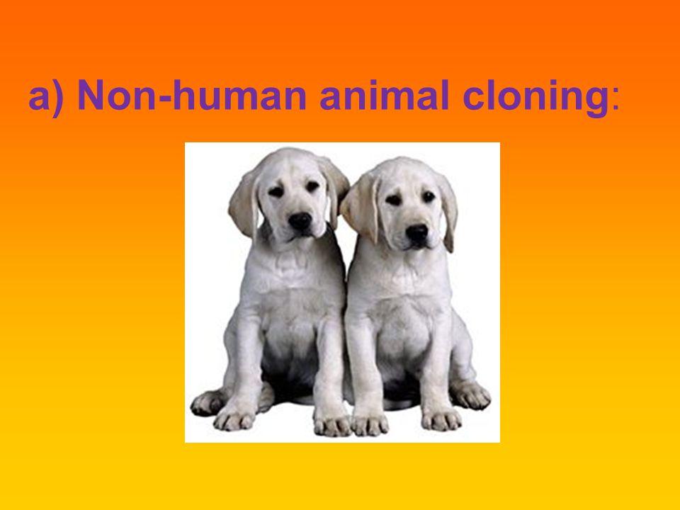 a) Non-human animal cloning:
