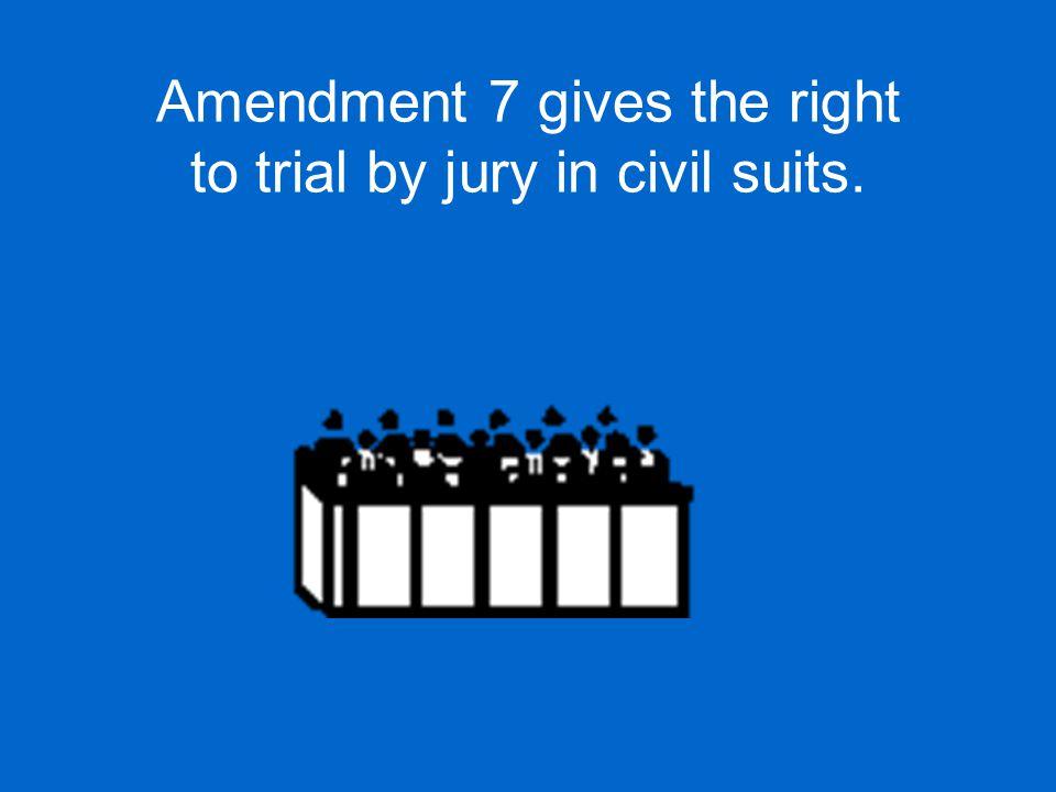Amendment 8 prohibits excessive bail and cruel and unusual punishment.