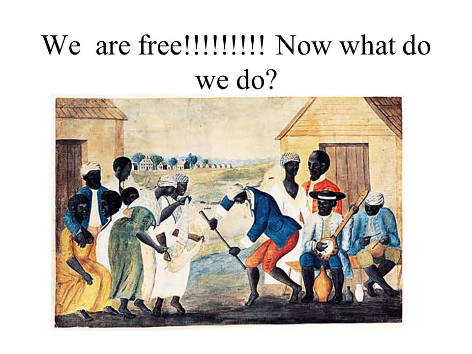 We are free!!!!!!!!! Now what do we do
