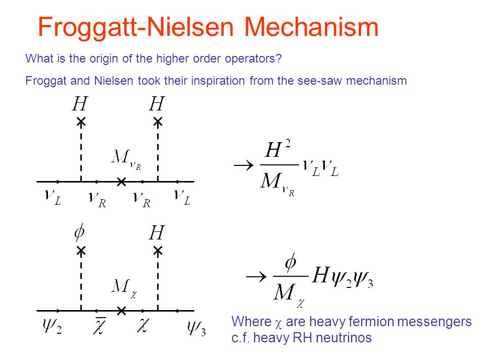 What is the origin of the higher order operators? Froggat and Nielsen took their inspiration from the see-saw mechanism Where  are heavy fermion mess