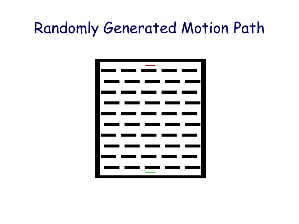 Randomly Generated Motion Path