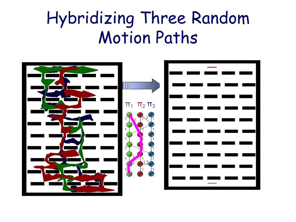 Hybridizing Three Random Motion Paths π1π1 π2π2 π3π3 2 2 1 1 1 1 1 1 1.5 1 1 1 1 1 1 1.