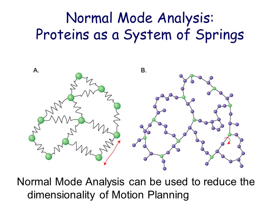 Normal Mode Analysis: Proteins as a System of Springs Normal Mode Analysis can be used to reduce the dimensionality of Motion Planning