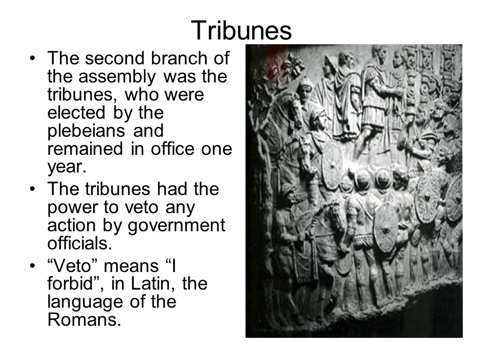 Tribunes The second branch of the assembly was the tribunes, who were elected by the plebeians and remained in office one year.