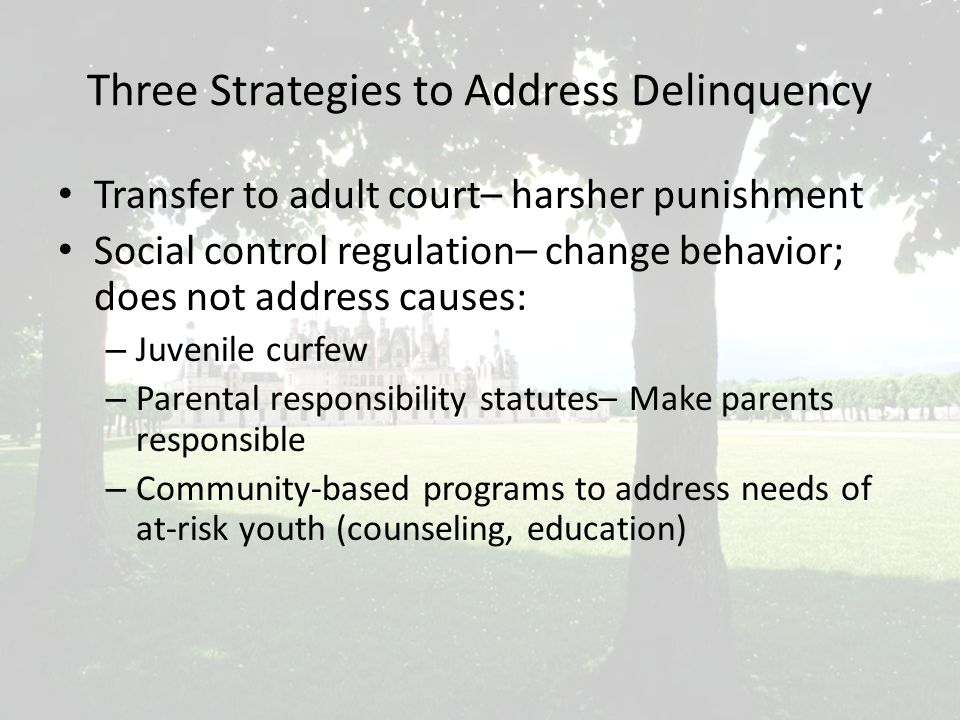 Three Strategies to Address Delinquency Transfer to adult court– harsher punishment Social control regulation– change behavior; does not address causes: – Juvenile curfew – Parental responsibility statutes– Make parents responsible – Community-based programs to address needs of at-risk youth (counseling, education)