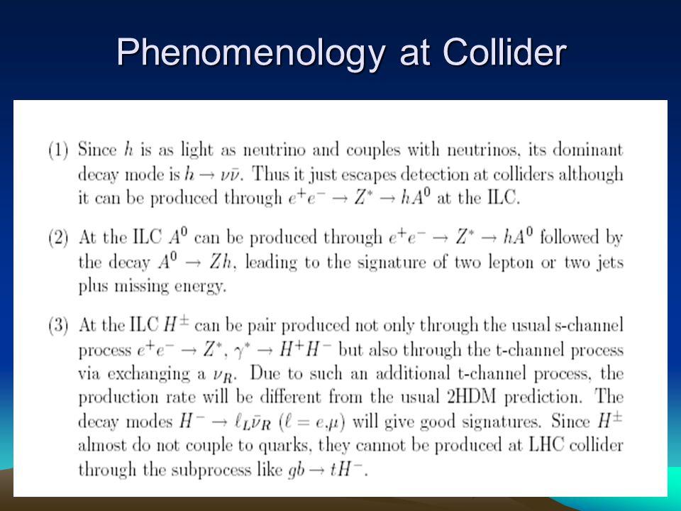 Phenomenology at Collider
