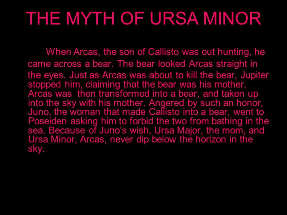 URSA MINOR AND URSA MAJOR