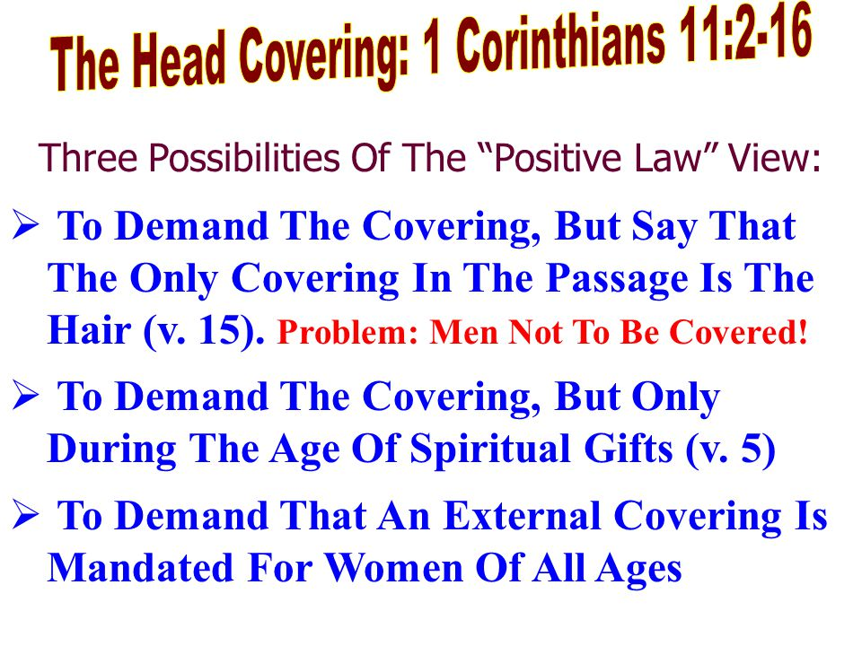 Three Possibilities Of The Positive Law View:  To Demand The Covering, But Say That The Only Covering In The Passage Is The Hair (v.