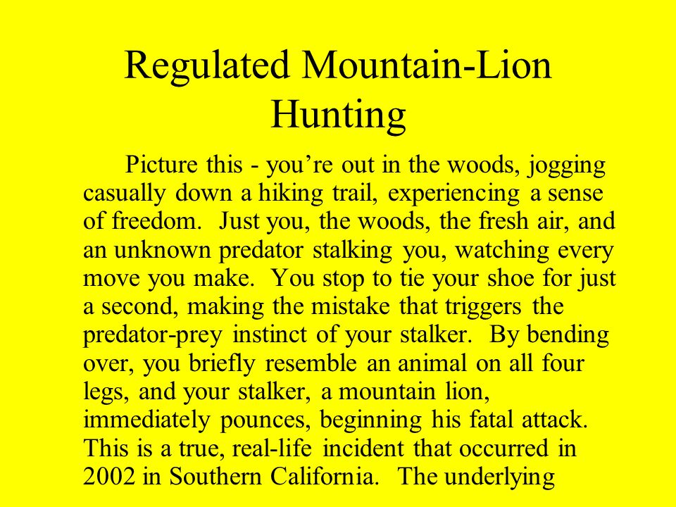 Regulated Mountain-Lion Hunting Picture this - you're out in the woods, jogging casually down a hiking trail, experiencing a sense of freedom.