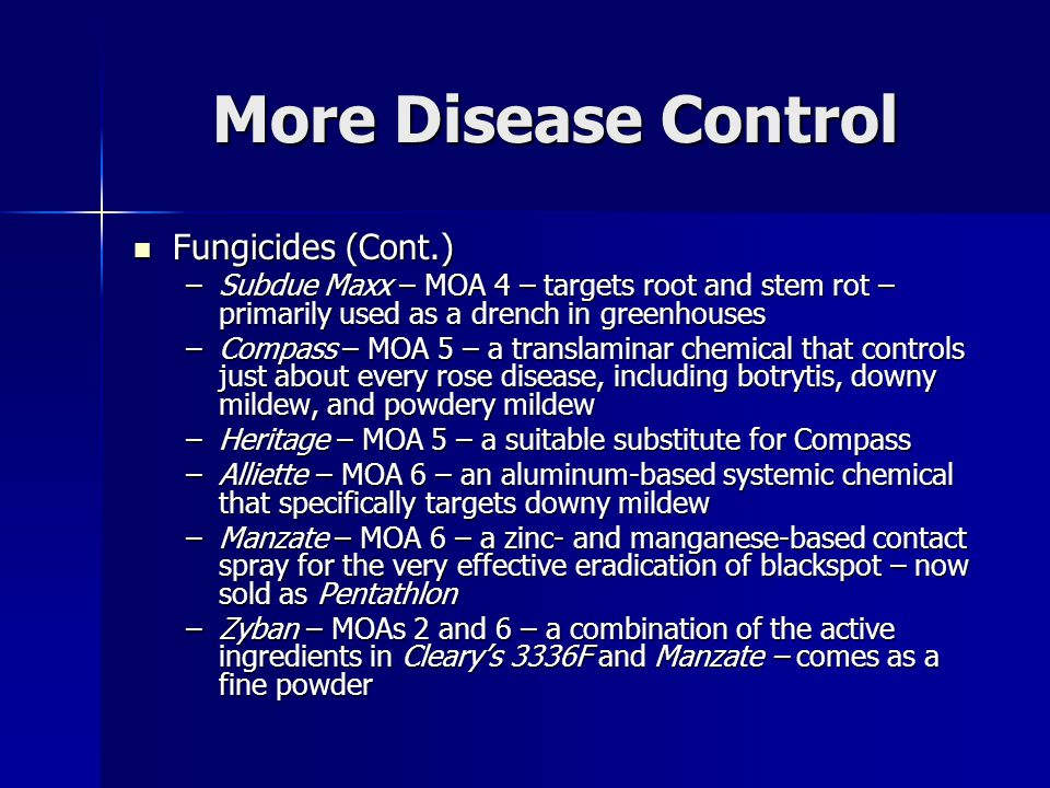 More Disease Control Fungicides (Cont.) Fungicides (Cont.) –Subdue Maxx – MOA 4 – targets root and stem rot – primarily used as a drench in greenhouses –Compass – MOA 5 – a translaminar chemical that controls just about every rose disease, including botrytis, downy mildew, and powdery mildew –Heritage – MOA 5 – a suitable substitute for Compass –Alliette – MOA 6 – an aluminum-based systemic chemical that specifically targets downy mildew –Manzate – MOA 6 – a zinc- and manganese-based contact spray for the very effective eradication of blackspot – now sold as Pentathlon –Zyban – MOAs 2 and 6 – a combination of the active ingredients in Cleary's 3336F and Manzate – comes as a fine powder