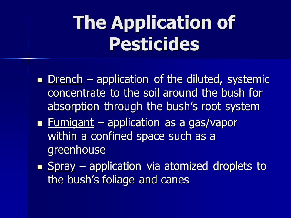 The Application of Pesticides Drench – application of the diluted, systemic concentrate to the soil around the bush for absorption through the bush's root system Drench – application of the diluted, systemic concentrate to the soil around the bush for absorption through the bush's root system Fumigant – application as a gas/vapor within a confined space such as a greenhouse Fumigant – application as a gas/vapor within a confined space such as a greenhouse Spray – application via atomized droplets to the bush's foliage and canes Spray – application via atomized droplets to the bush's foliage and canes