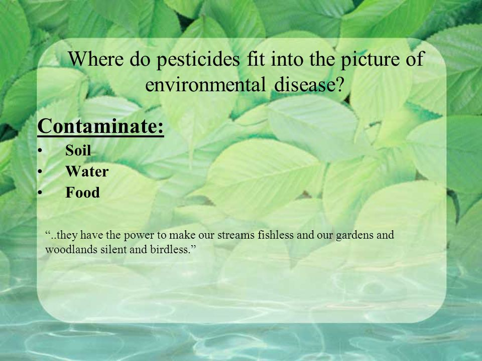 Where do pesticides fit into the picture of environmental disease.