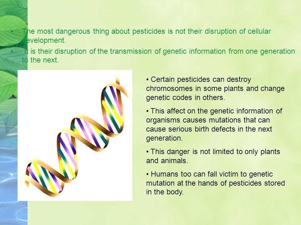 The most dangerous thing about pesticides is not their disruption of cellular development.