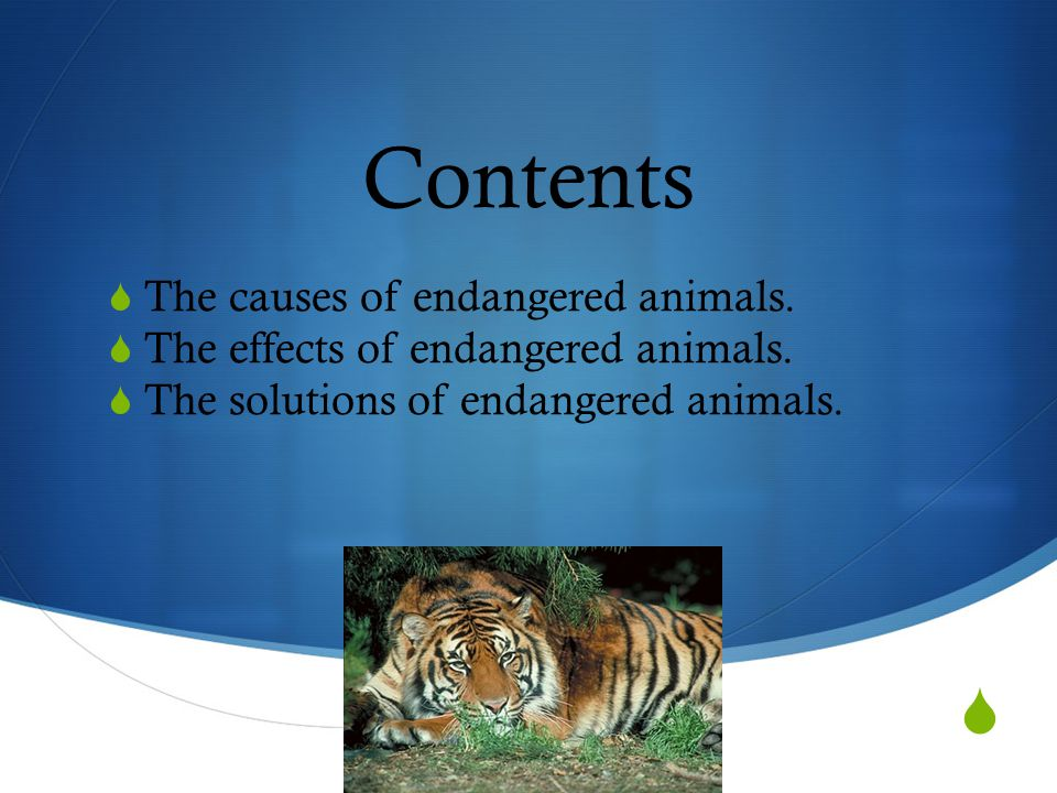  Contents  The causes of endangered animals. The effects of endangered animals.