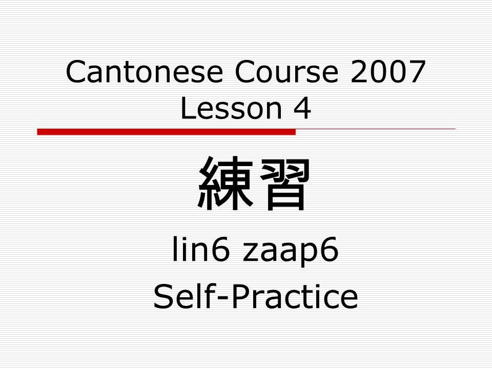 Cantonese Course 2007 Lesson 4 練習 lin6 zaap6 Self-Practice