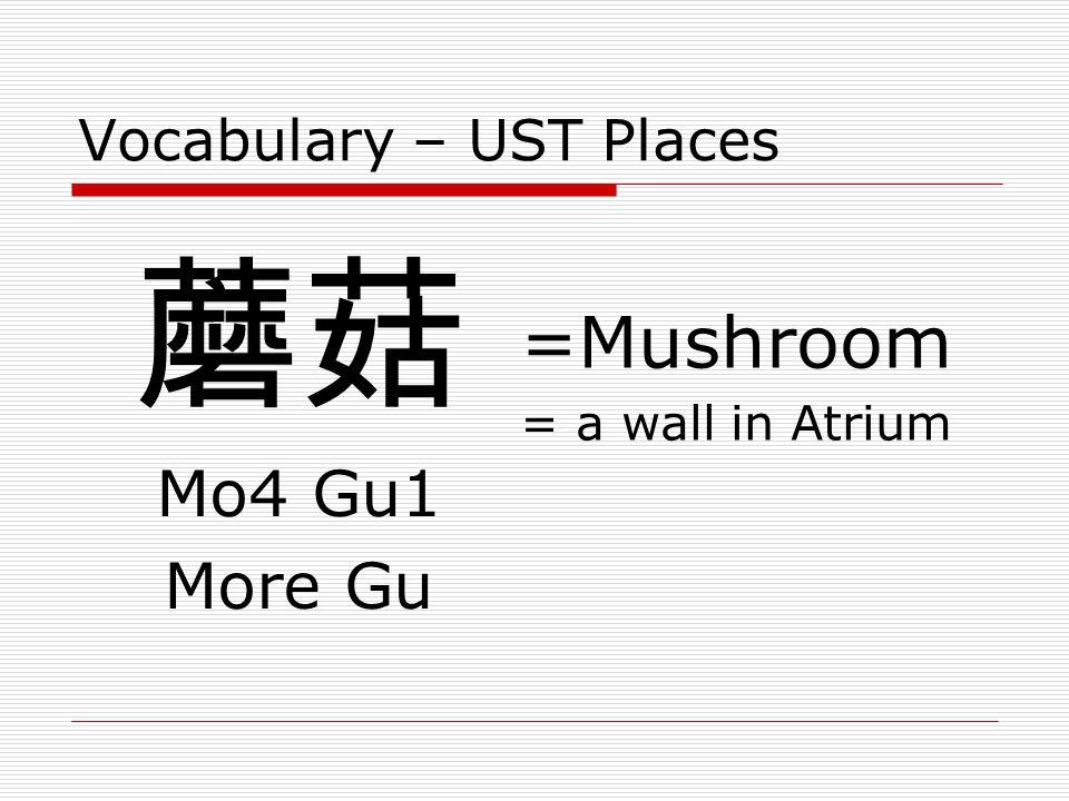 Vocabulary – UST Places 蘑菇 Mo4 Gu1 More Gu =Mushroom = a wall in Atrium