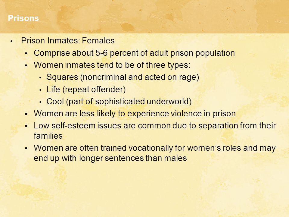 Prisons Prison Inmates: Females  Comprise about 5-6 percent of adult prison population  Women inmates tend to be of three types: Squares (noncriminal and acted on rage) Life (repeat offender) Cool (part of sophisticated underworld)  Women are less likely to experience violence in prison  Low self-esteem issues are common due to separation from their families  Women are often trained vocationally for women's roles and may end up with longer sentences than males