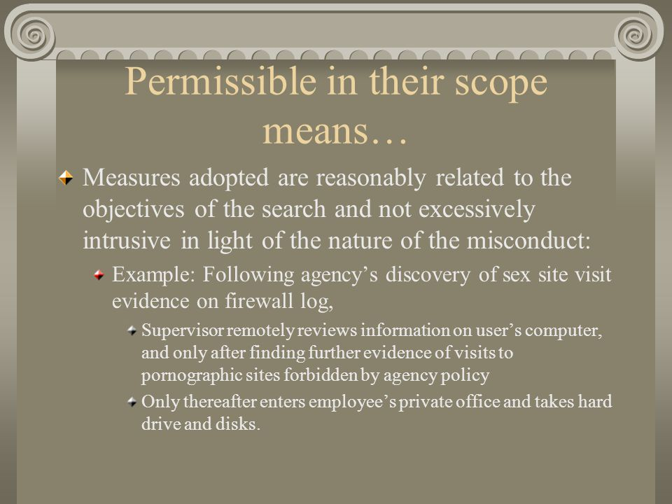 Permissible in their scope means… Measures adopted are reasonably related to the objectives of the search and not excessively intrusive in light of th