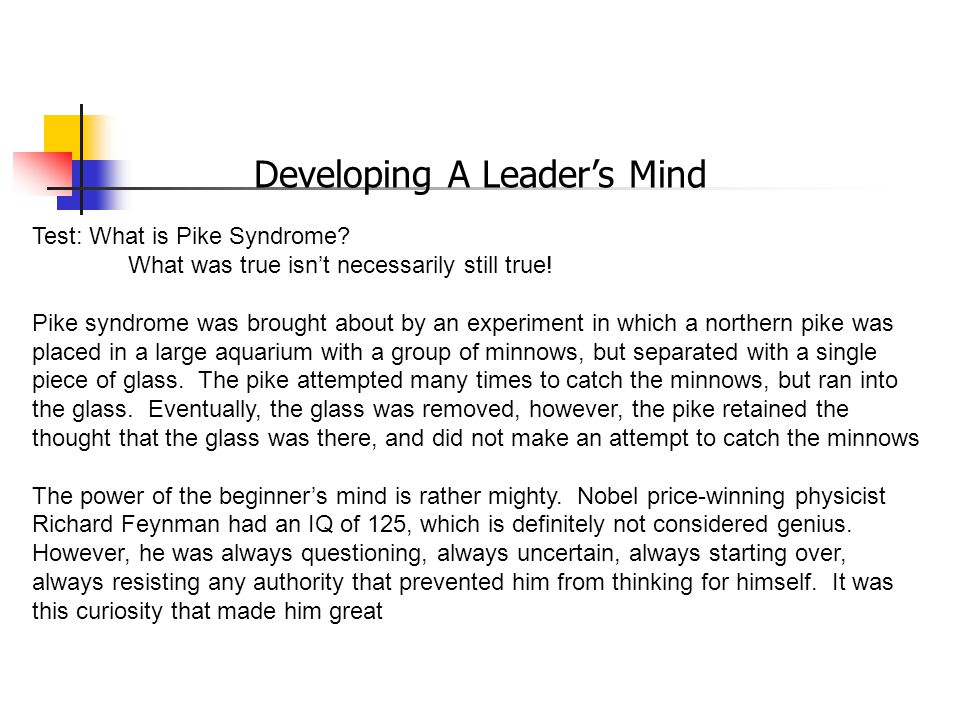 Developing A Leader's Mind Test: What is Pike Syndrome.