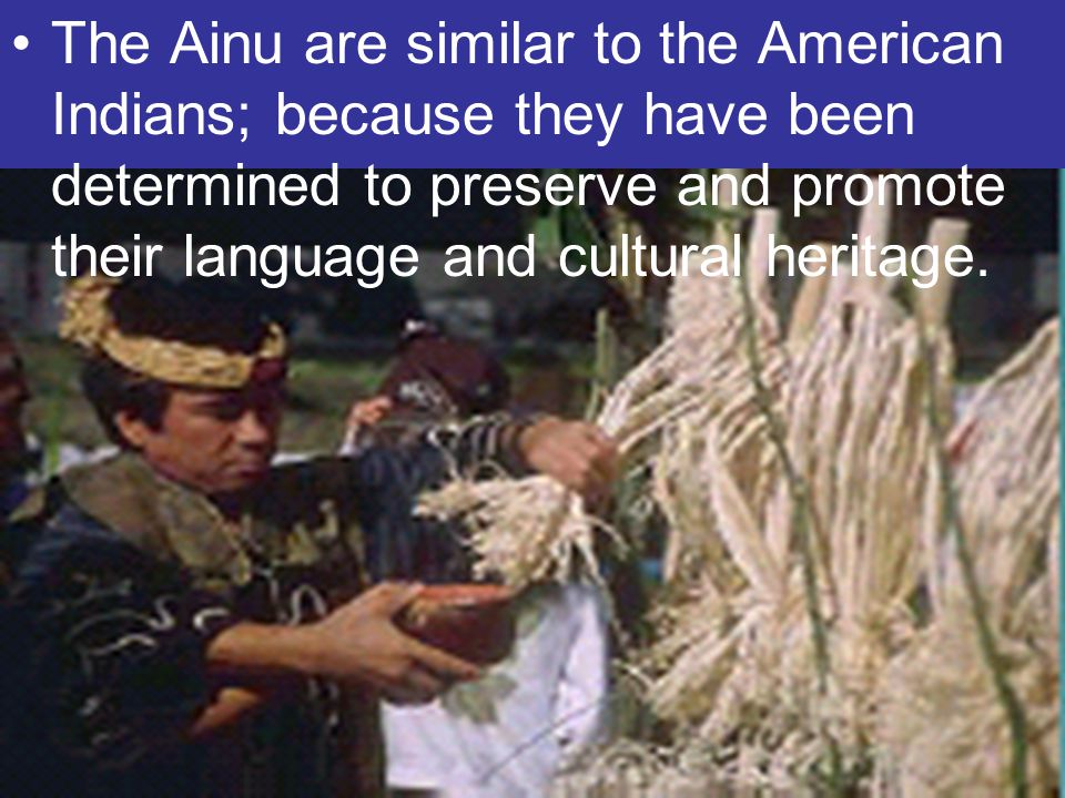 The Ainu are similar to the American Indians; because they have been determined to preserve and promote their language and cultural heritage.