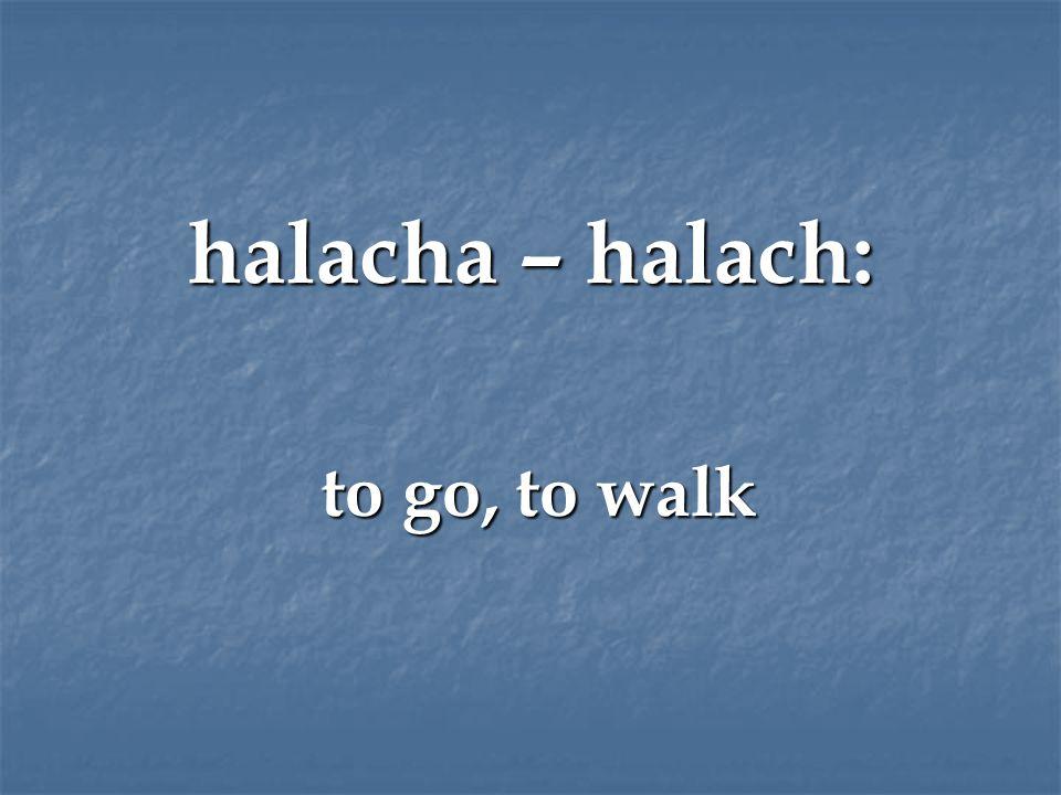 halacha – halach: to go, to walk to go, to walk