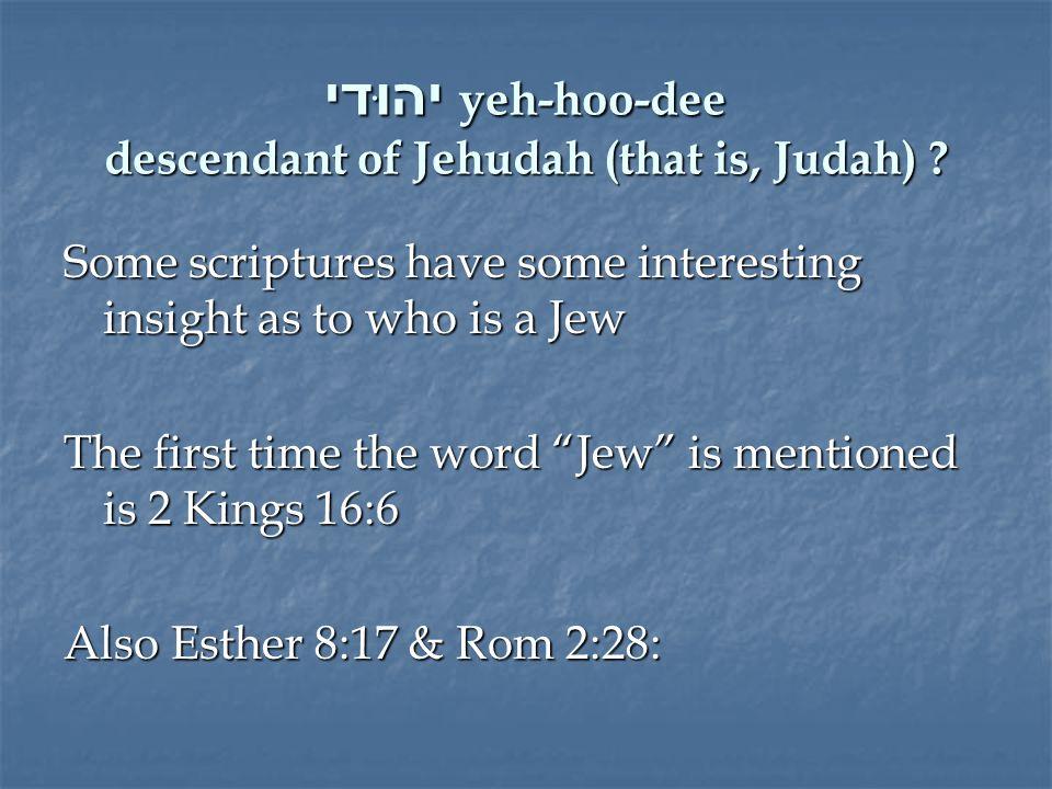 יהוּדי yeh-hoo-dee descendant of Jehudah (that is, Judah) .