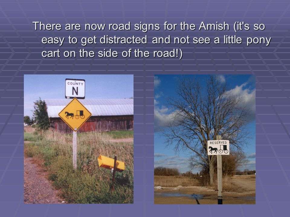 There are now road signs for the Amish (it s so easy to get distracted and not see a little pony cart on the side of the road!)