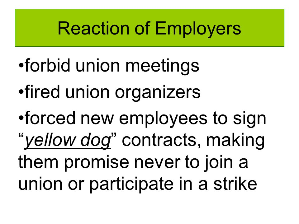 Reaction of Employers forbid union meetings fired union organizers forced new employees to sign yellow dog contracts, making them promise never to join a union or participate in a strike