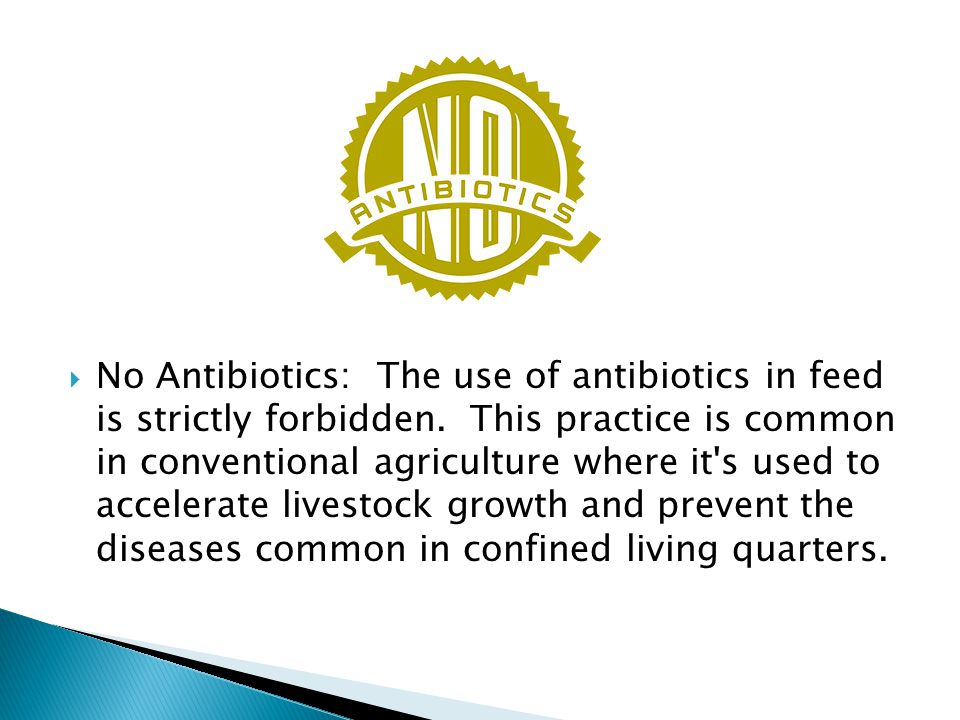  No Antibiotics: The use of antibiotics in feed is strictly forbidden.