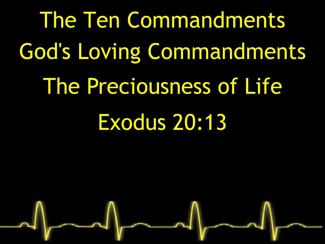 Exodus 20:13 (ESV) 13 You shall not murder.