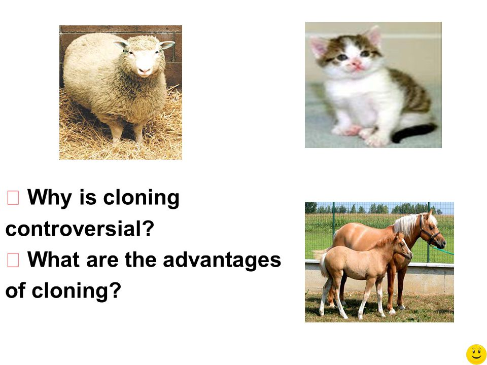 ◆ Why is cloning controversial? ◆ What are the advantages of cloning?