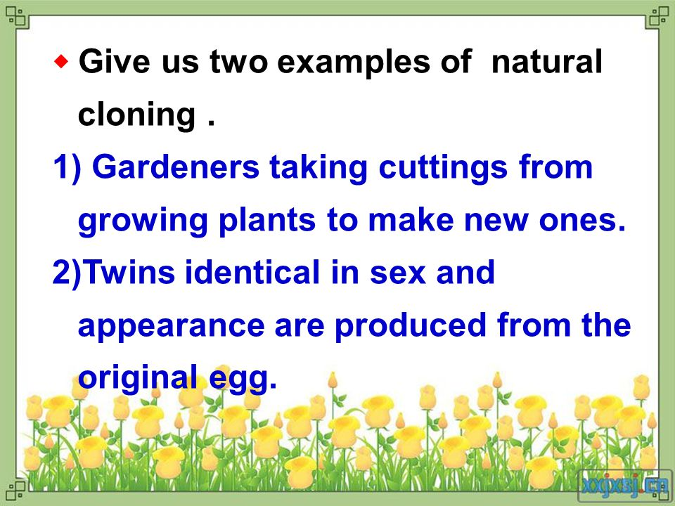 ◆ Give us two examples of natural cloning.