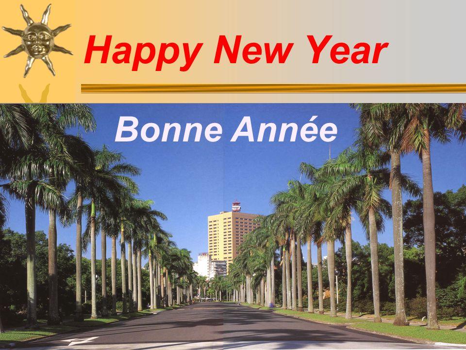 Bonne Année Happy New Year