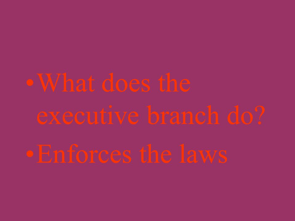 What does the judicial branch of a government do? Interprets or explains the meaning of the laws