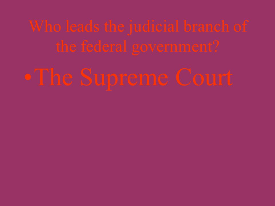 Who leads the executive branch of the federal government? The President