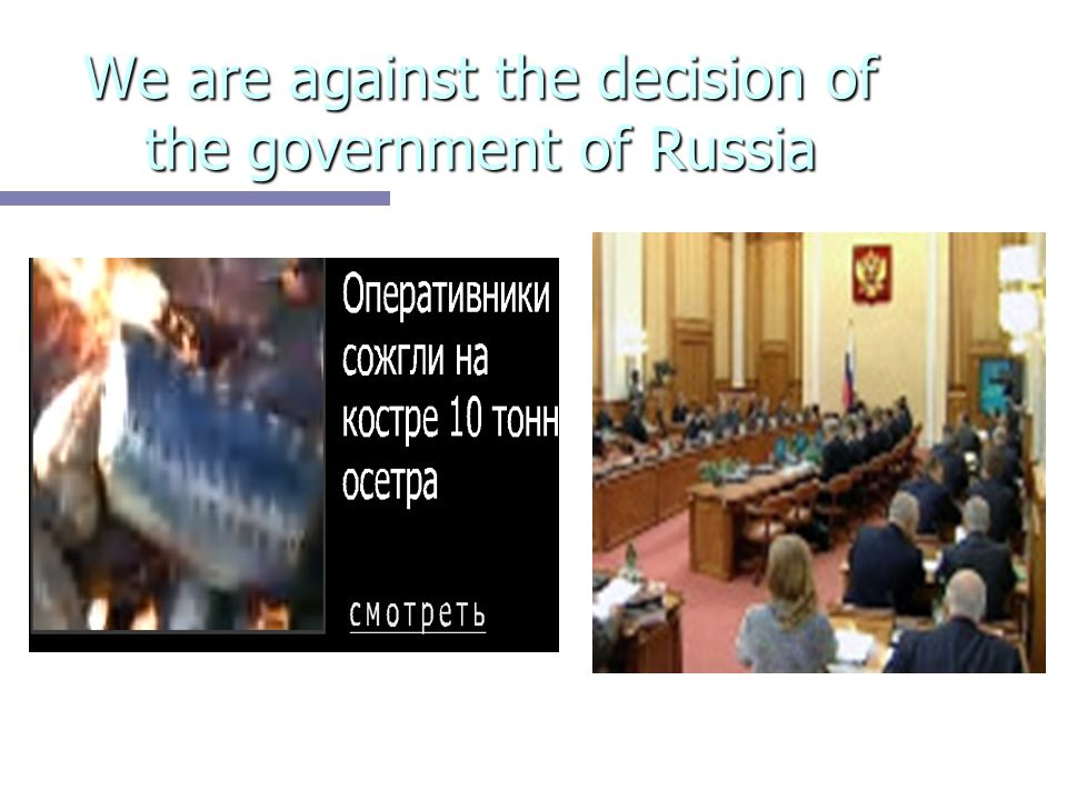 We are against the decision of the government of Russia