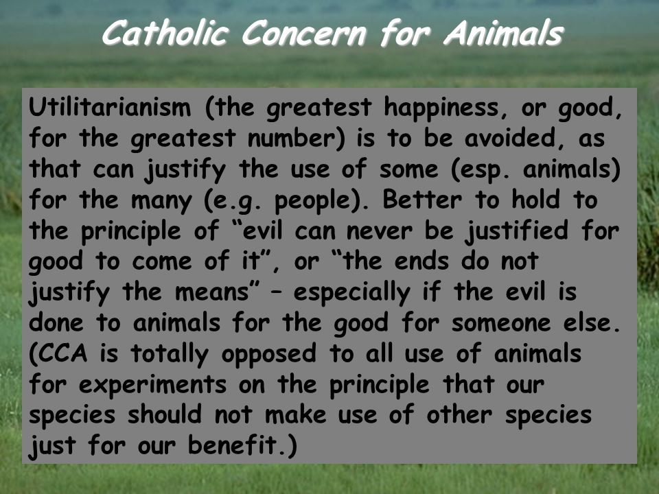 Catholic Concern for Animals Utilitarianism (the greatest happiness, or good, for the greatest number) is to be avoided, as that can justify the use o