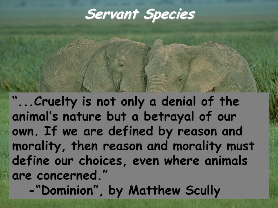 "Servant Species ""...Cruelty is not only a denial of the animal's nature but a betrayal of our own. If we are defined by reason and morality, then reas"