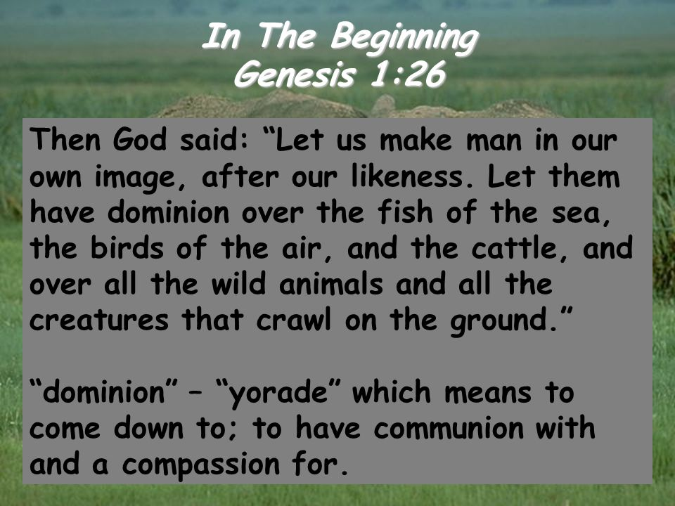 "In The Beginning Genesis 1:26 Then God said: ""Let us make man in our own image, after our likeness. Let them have dominion over the fish of the sea, t"