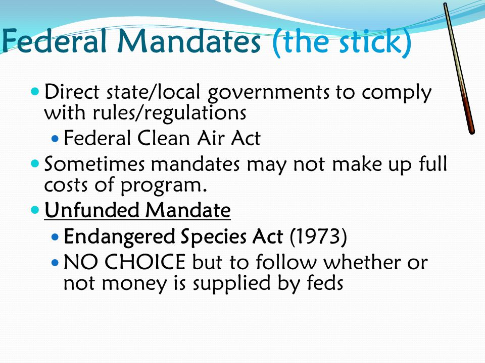 Federal Mandates (the stick) Direct state/local governments to comply with rules/regulations Federal Clean Air Act Sometimes mandates may not make up full costs of program.