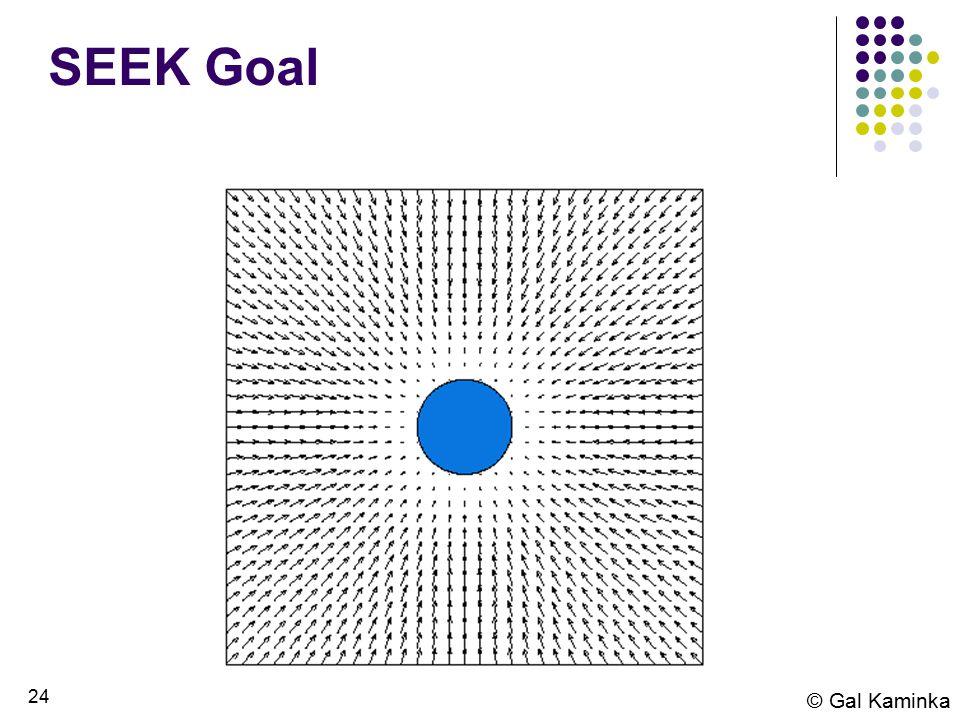 24 © Gal Kaminka SEEK Goal