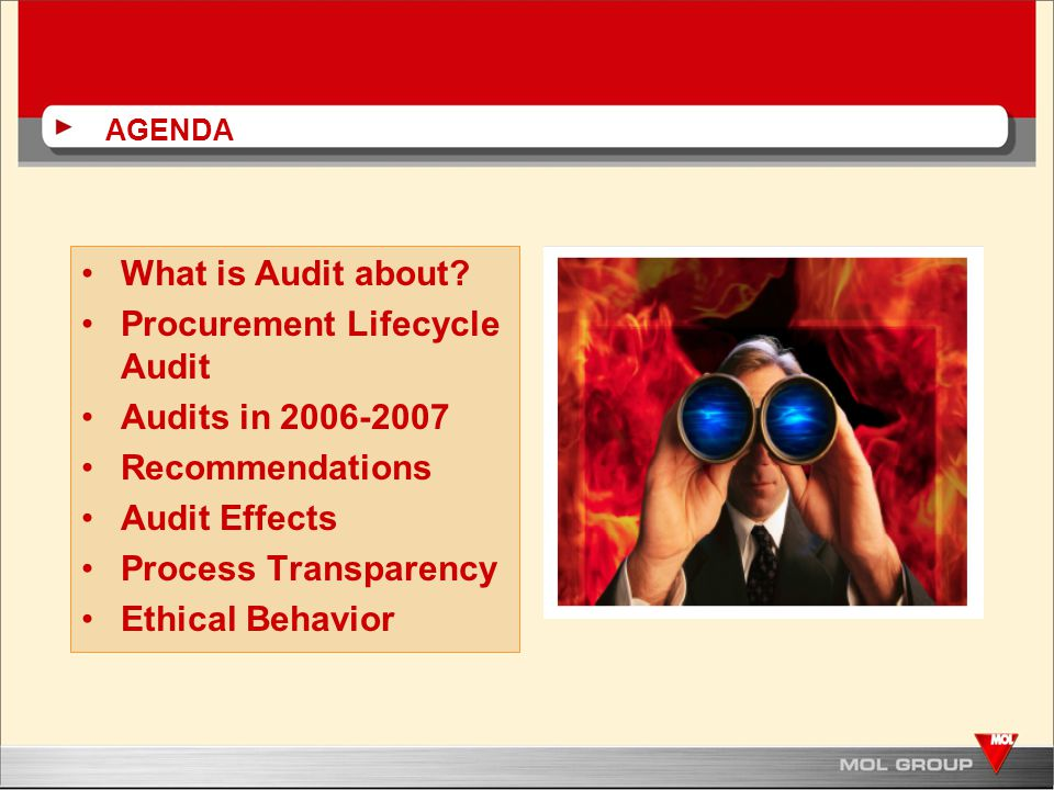 AGENDA What is Audit about.