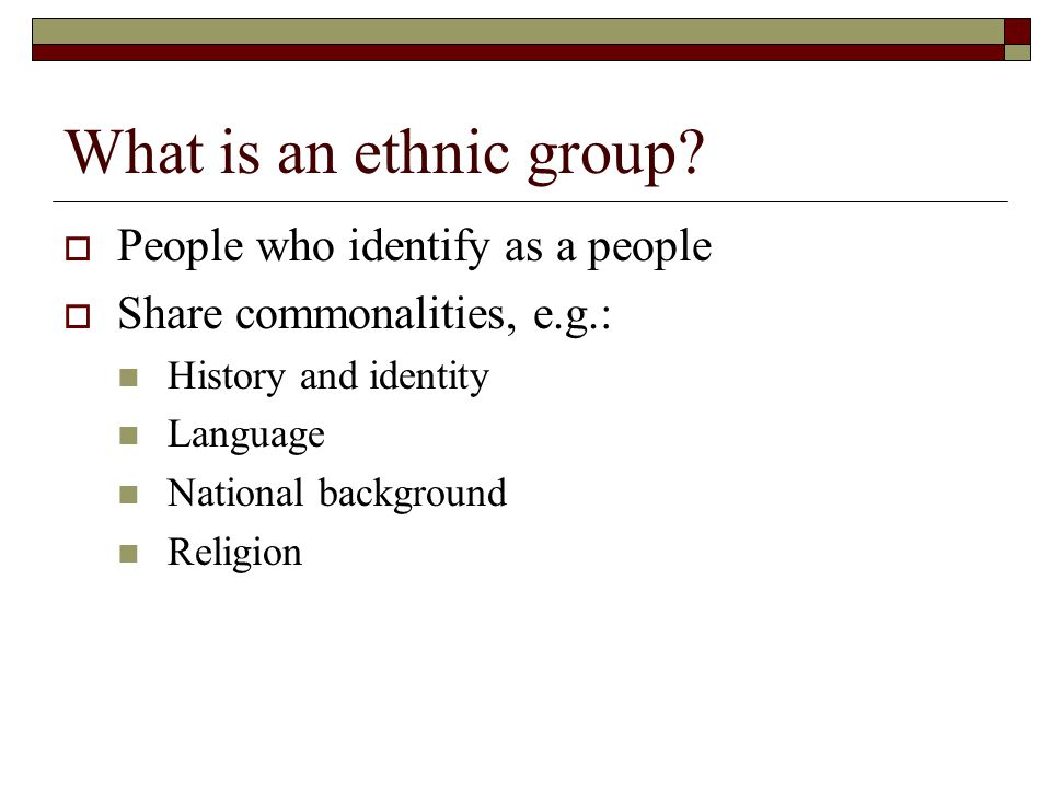 What is an ethnic group.