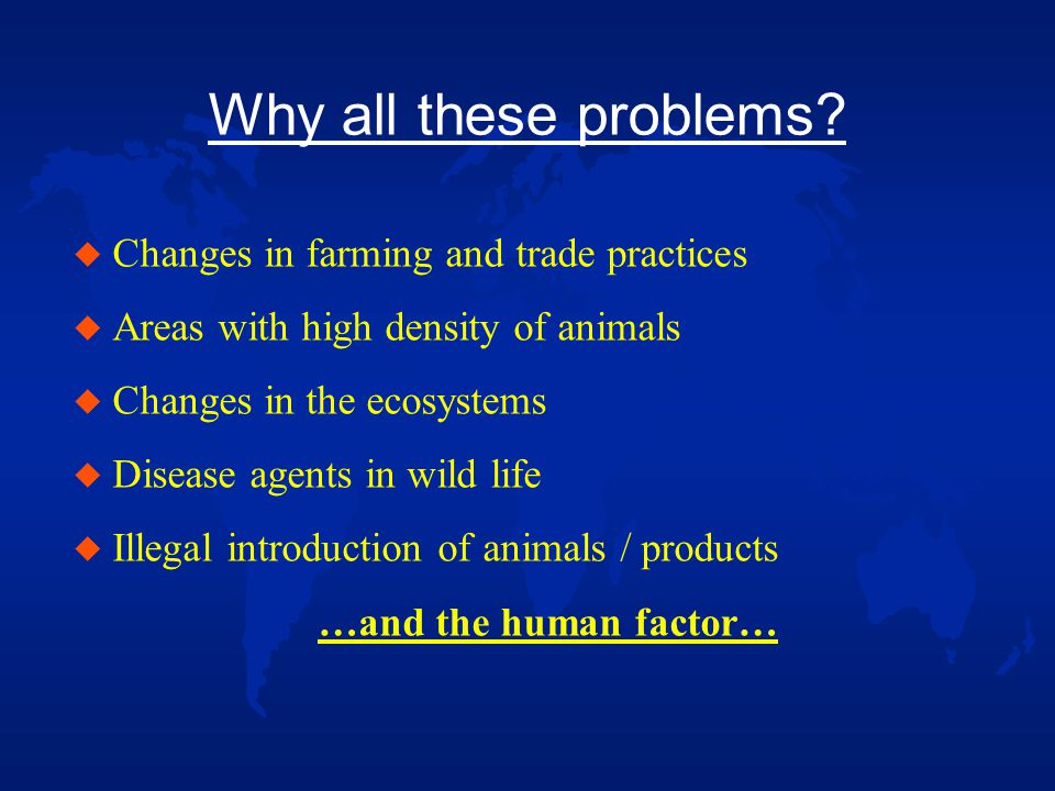 What have we learned u More animal health problems than expected u Animal health problems do have an impact on the whole society, not only on the farming Community u Massive culling not acceptable, but it might still be necessary … u Keep the people informed u High costs and losses for taxpayers, the farming Community and other sectors concerned Is all of this sustainable?