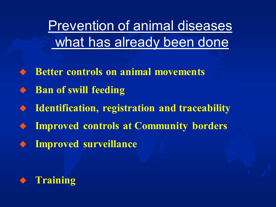 Control of animal diseases what has already been done (1) u New Community legislation on animal disease control: Foot and Mouth Disease-FMD, Classical Swine Fever-CSF, Avian influenza-AI > emergency vaccination more viable option u Vaccination is currently used: u - in the wild boar against CSF in GER, LUX, FR (and SLK) - against AI in IT (DIVA strategy) - against Bluetongue in FR, IT, SP (and PT) - against Newcastle disease in the vast majority of MSs … but many people still think that Brussels policy for list A diseases is to forbid vaccination …!!!