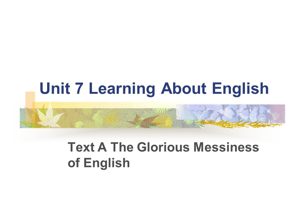 Unit 7 Learning About English Text A The Glorious Messiness of English