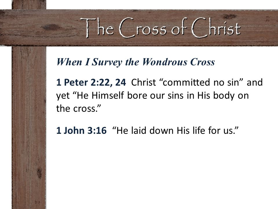 1 Peter 2:22, 24 Christ committed no sin and yet He Himself bore our sins in His body on the cross. 1 John 3:16 He laid down His life for us.